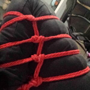 shibari bondage avignon
